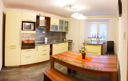 Kuhinja oz. manjša kuhinja v nastanitvi Apartments Shock