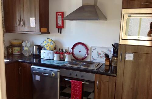 A kitchen or kitchenette at Killyliss Lodge