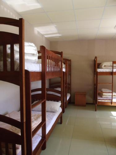 A bunk bed or bunk beds in a room at Citrus Hostel