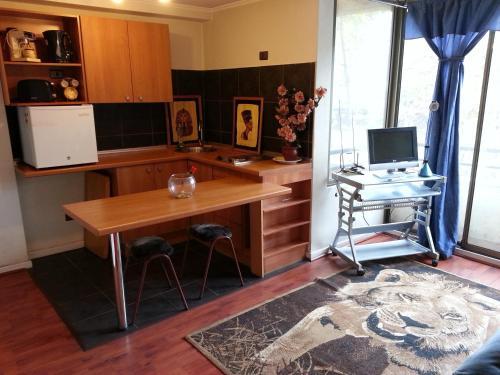 Una televisión o centro de entretenimiento en Kuizi Apartamento Santiago Centro
