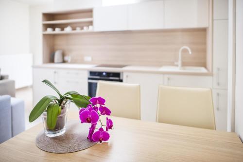 Virtuvė arba virtuvėlė apgyvendinimo įstaigoje Sveikatos ir grožio namų apartamentai