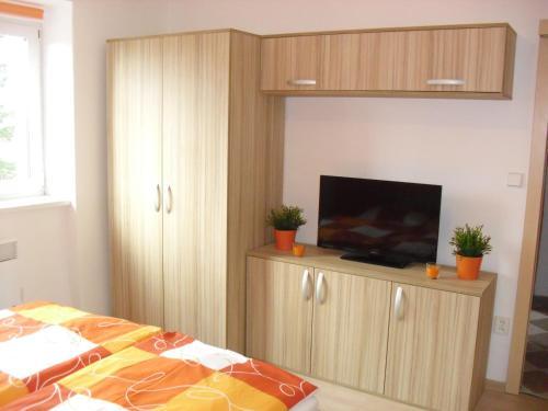 TV a/nebo společenská místnost v ubytování Apartmán Linda
