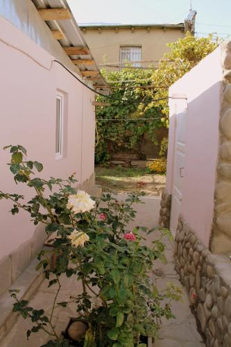 Guesthouse Levani