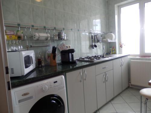 Kuhinja oz. manjša kuhinja v nastanitvi Union Apartment
