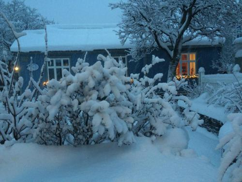 Forsaela apartments and rooms during the winter