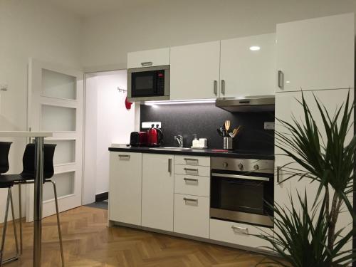 Η κουζίνα ή μικρή κουζίνα στο Apartment Na Kopečku