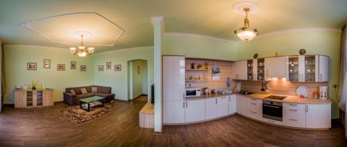 Kuchyň nebo kuchyňský kout v ubytování Apartment Elizaveta