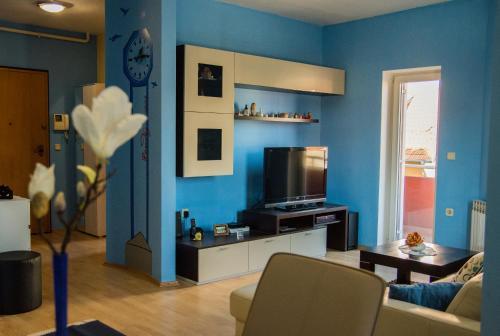 TV i/ili zabavni centar u objektu Apartment Giro