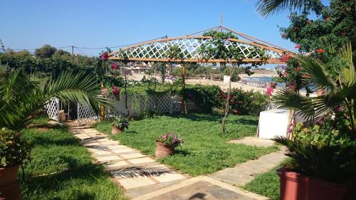 A garden outside Villa in the sea Crete