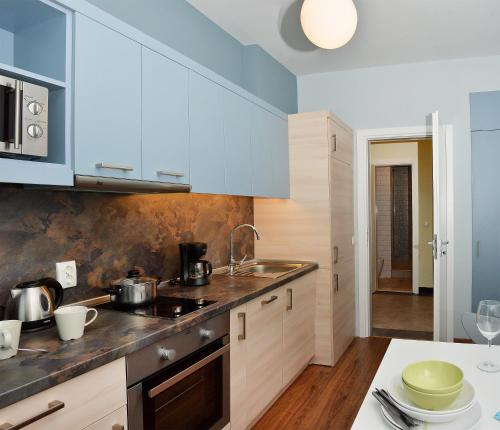 Küche/Küchenzeile in der Unterkunft VIP Apartments Sofia