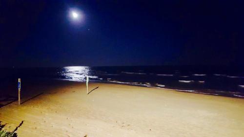 ชายหาดของอพาร์ตโฮเทลหรือชายหาดที่อยู่ใกล้ ๆ