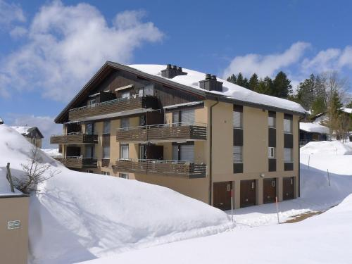 Apartment Parkhotel Arvenbühl.1 im Winter
