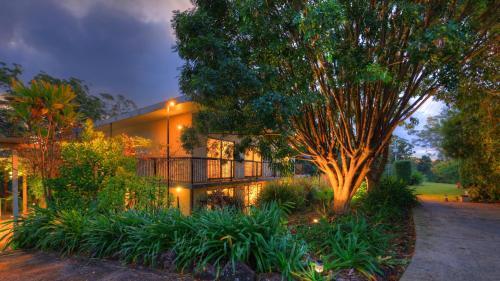A garden outside Mapleton Falls Accommodation