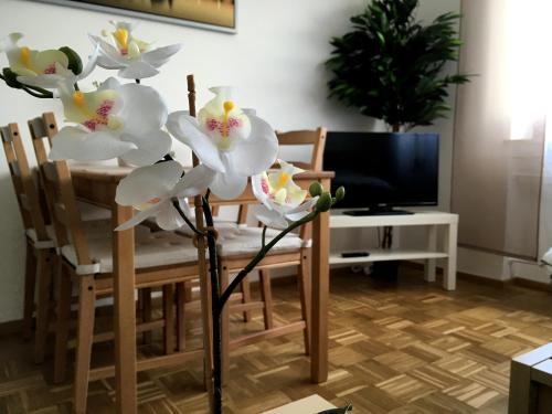 TV a/nebo společenská místnost v ubytování Arcaden Apartment