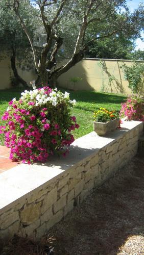 Terrasse ou espace extérieur de l'établissement Clos Marjolie