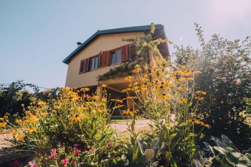 Vrt u objektu Holiday Home Castanea