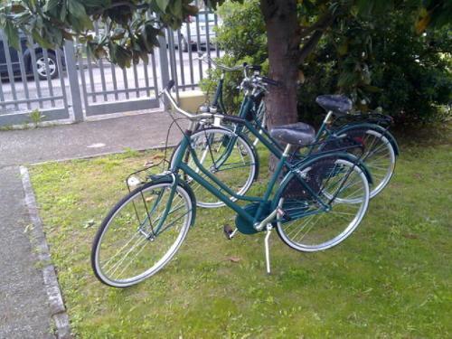 Jízda na kole v ubytování Residence Viale Venezia nebo okolí