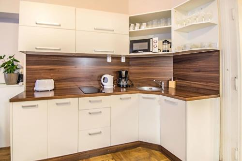 A kitchen or kitchenette at Michalska apartment by Ruterra