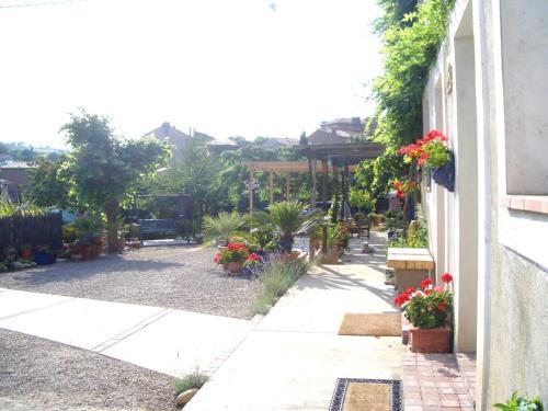 A garden outside Maison de Laura