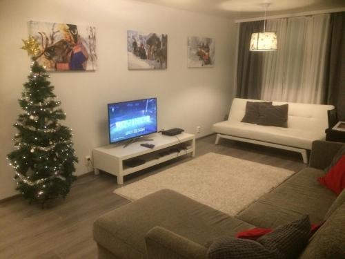 A television and/or entertainment centre at Rovaniemi City Apartments