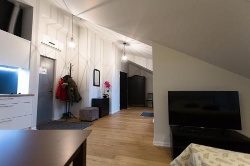 TV tai viihdekeskus majoituspaikassa Apple Apartments