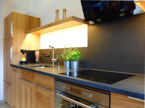A kitchen or kitchenette at Ferienwohnung In den Bergen