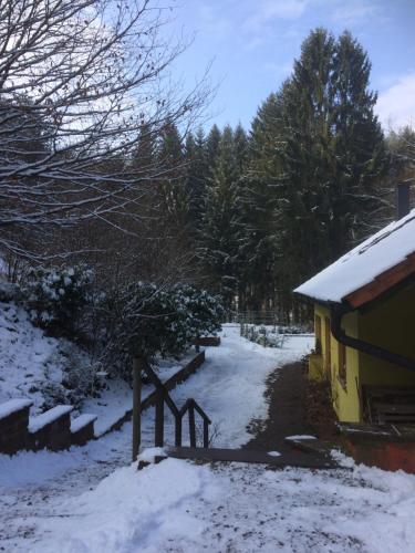 Ferienwohnung am Aschbacherhof im Winter
