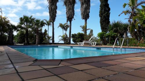 Het zwembad bij of vlak bij Apartamentos Villa Colon