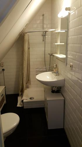 A bathroom at Vakantiehuis Limburg - Landgraaf