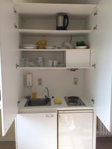 Cuisine ou kitchenette dans l'établissement Logies De Wandelaar