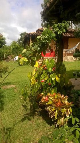 Um jardim em Pousada Sempre Viva