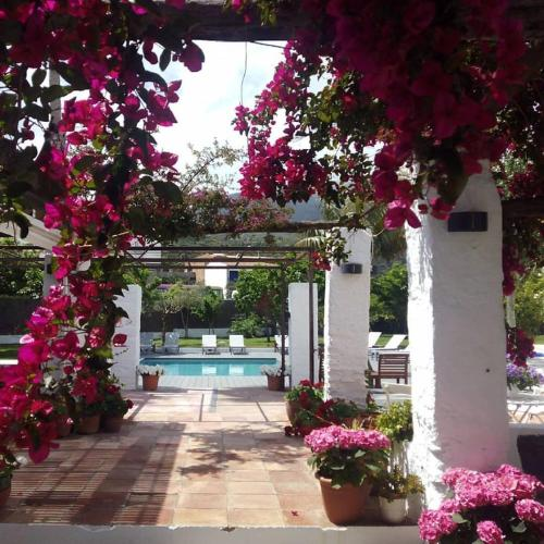 The swimming pool at or near Horta d'en Rahola - Adults Only