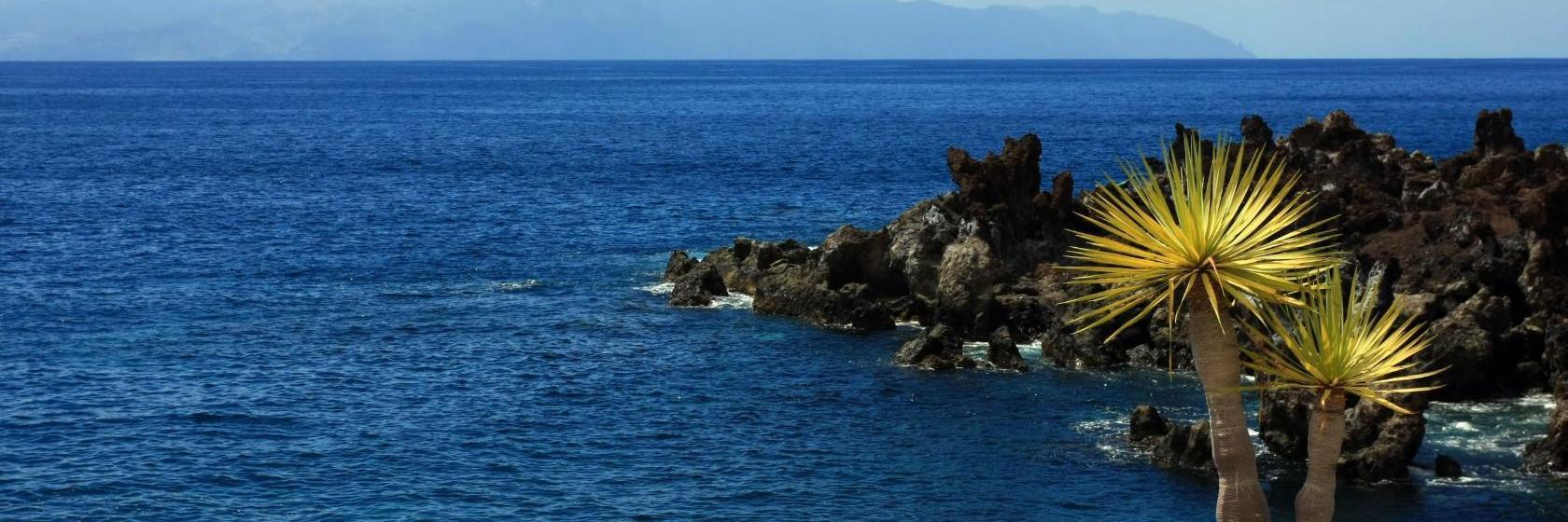 Hoteles baratos cerca de Playa Calera, Islas Canarias ...