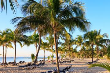 Playa del Carmen: Car hire in 14 pick-up locations
