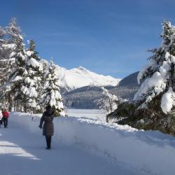 Sankt Moritz-Bad 2 מלונות
