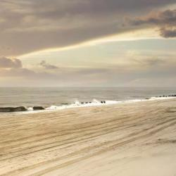Ocean Beach 26 hotela