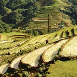 Lao Cai 4 lodges