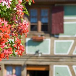 Saint-Amand-les-Eaux 15 hotelov