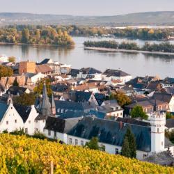 Rüdesheim am Rhein 65 hotels