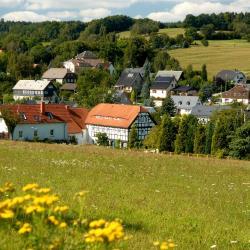 Riedlhütte 9 hotels
