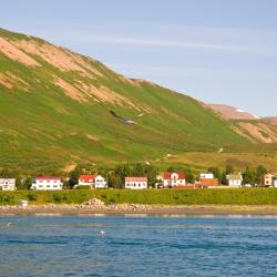 Ólafsfjörður ホテル3軒