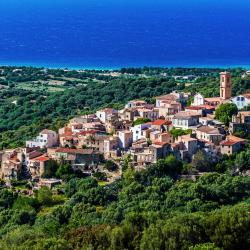 Aregno 9 hotels