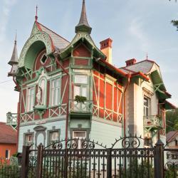 Ocna Sibiului 11 hotels
