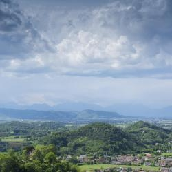 Abano Terme 51 pet-friendly hotels