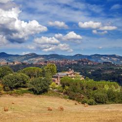 Castel Madama 8 ξενοδοχεία