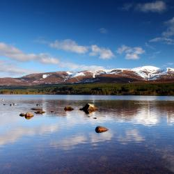 Aviemore 3 homestays