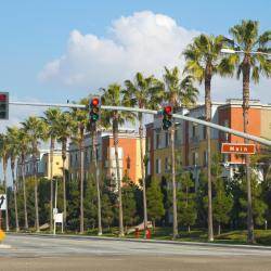 Irvine 113 hotels