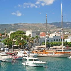 Kos Town 44 self catering properties