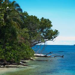 Honiara 11 hotel