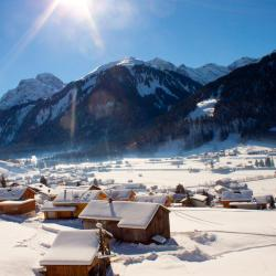 Au im Bregenzerwald 38 Hotels